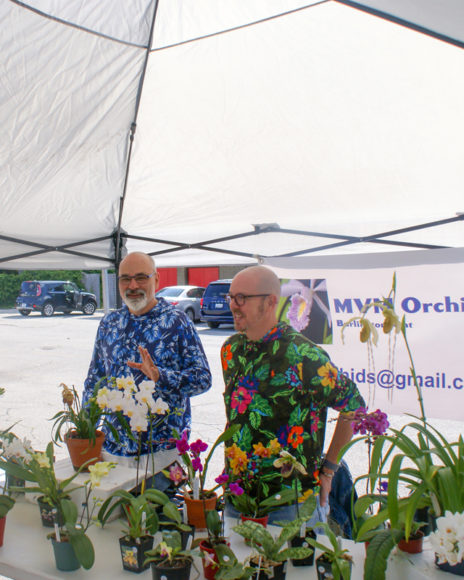 Daniel and Phillip at MVM Orchids talk flowers